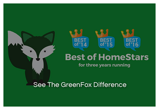 greenfox_windows_video
